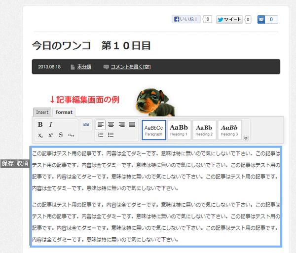 Front-end Editor ビジュアルエディタ(WYSIWYGエディタ)