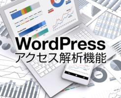 WordPressアクセス解析機能